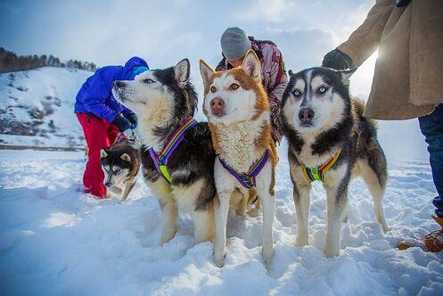 Зимние Каникулы на Байкале 2021