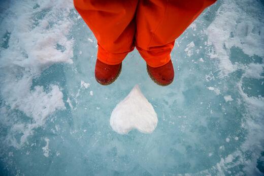 Семейный лед